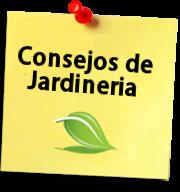 Consejos de Jardineria